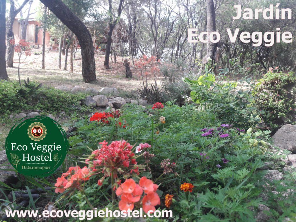 jardin eco veggie 1 1024x768 - Huerta Eco Veggie