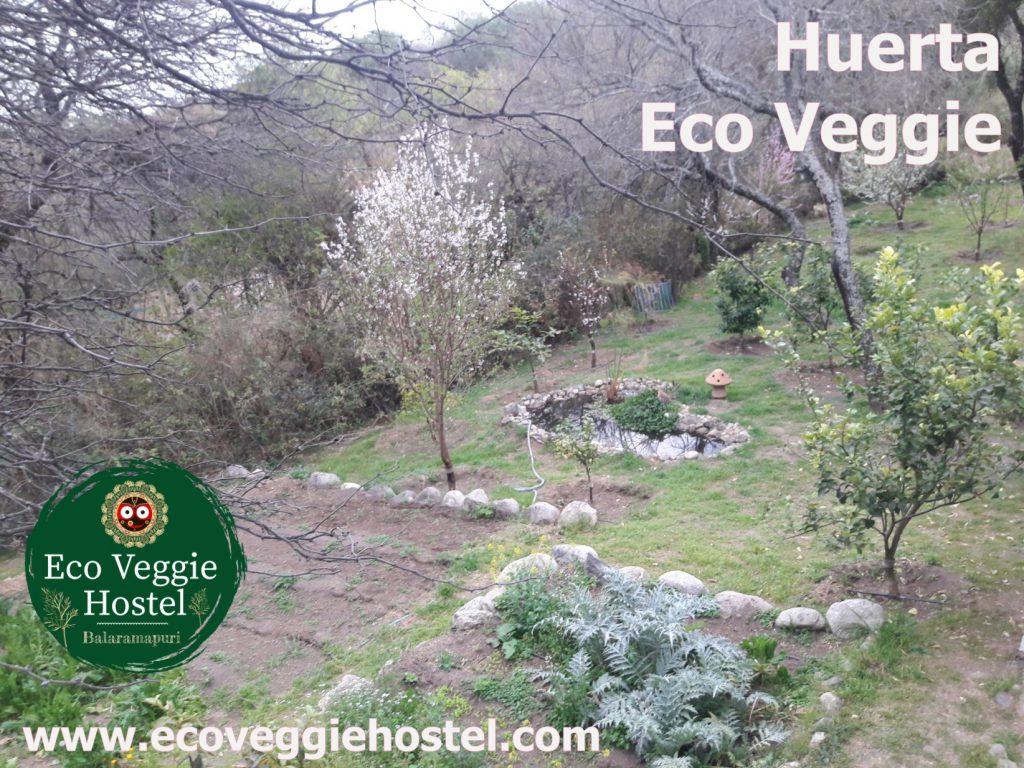 huerta eco veggie copia 1024x768 - Huerta Eco Veggie