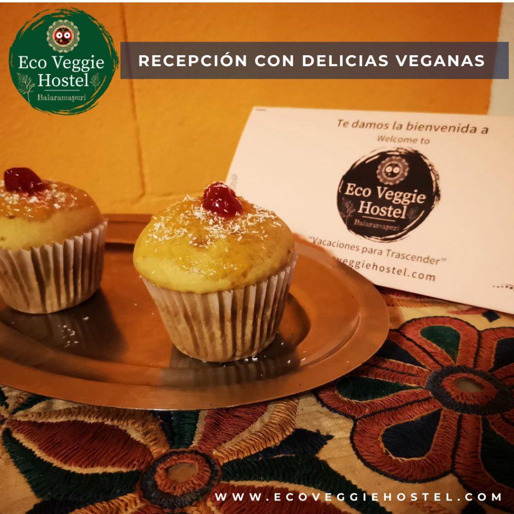 recepcion con delicias 1024x1024 - Menúes Eco veggie
